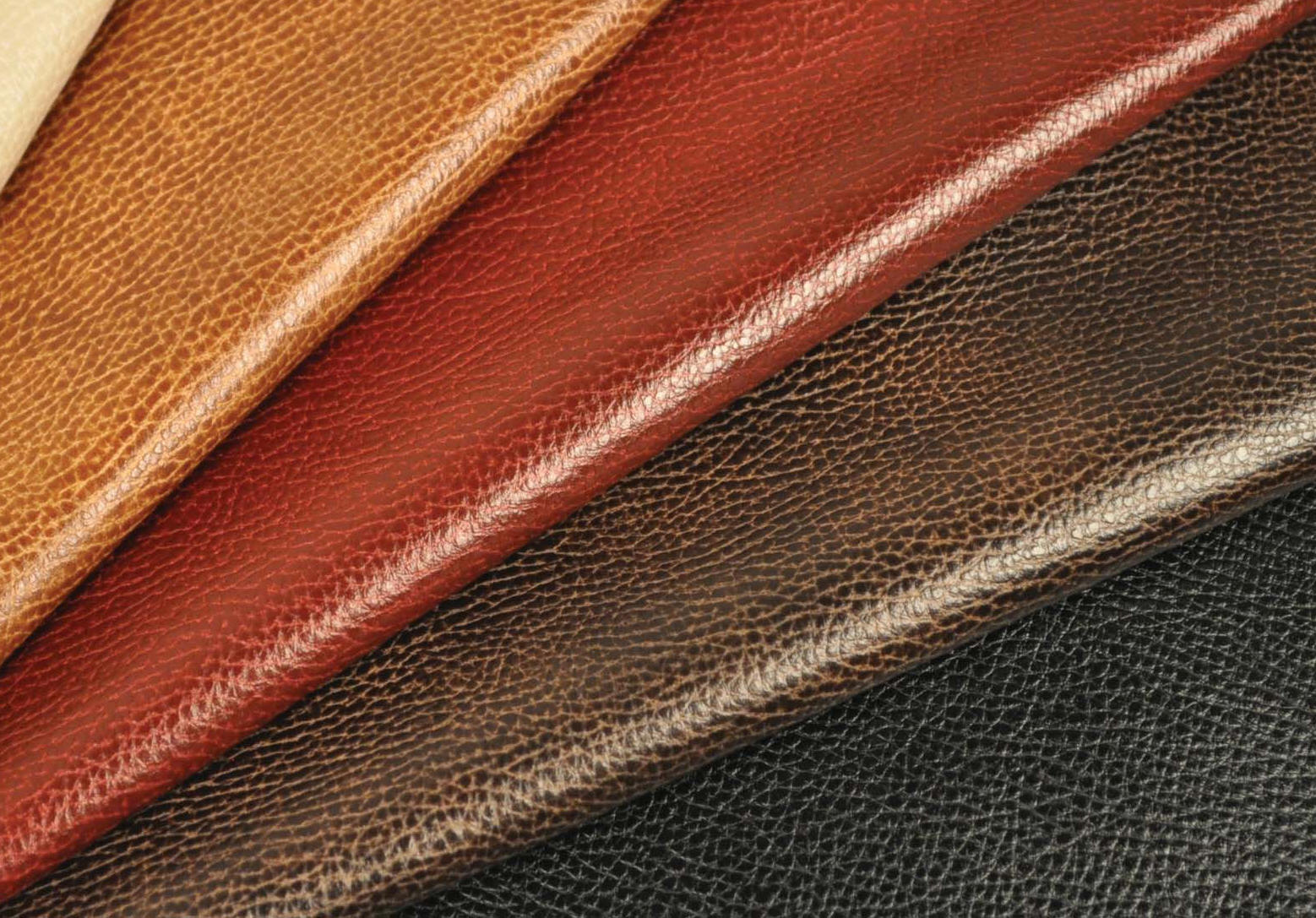 how to care for your leather  sydney leather cleaners
